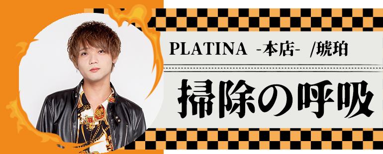 PLATINA -本店- /琥珀
